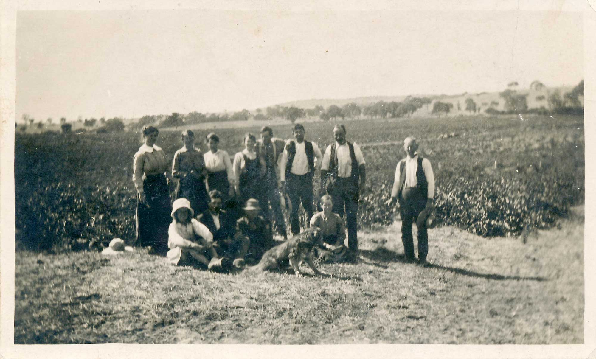 Group in Stonegarden vineyards c1870s