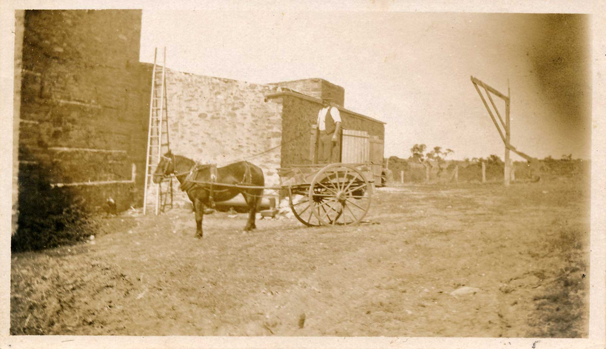 Horse and cart Stonegarden winery c1870s