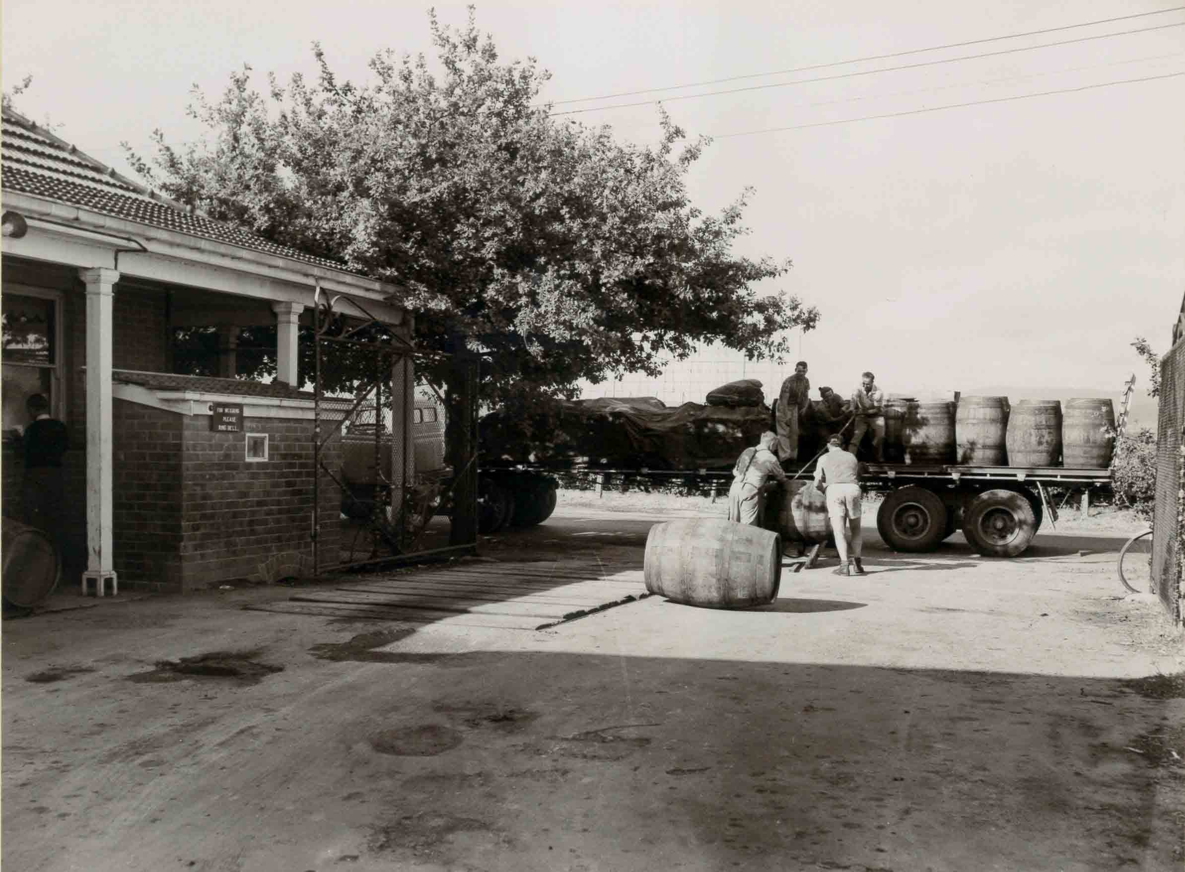 Loading Hogsheads at Hamiltons Ewell Winery 1950s