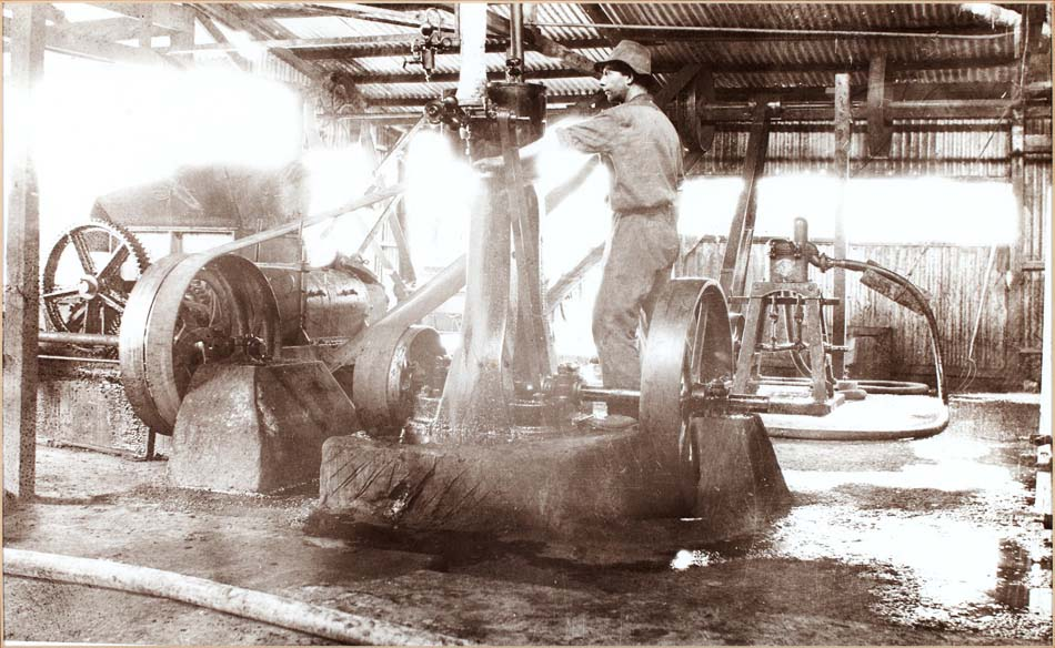 Worker at Hamiltons Ewell Winery circa 1880s