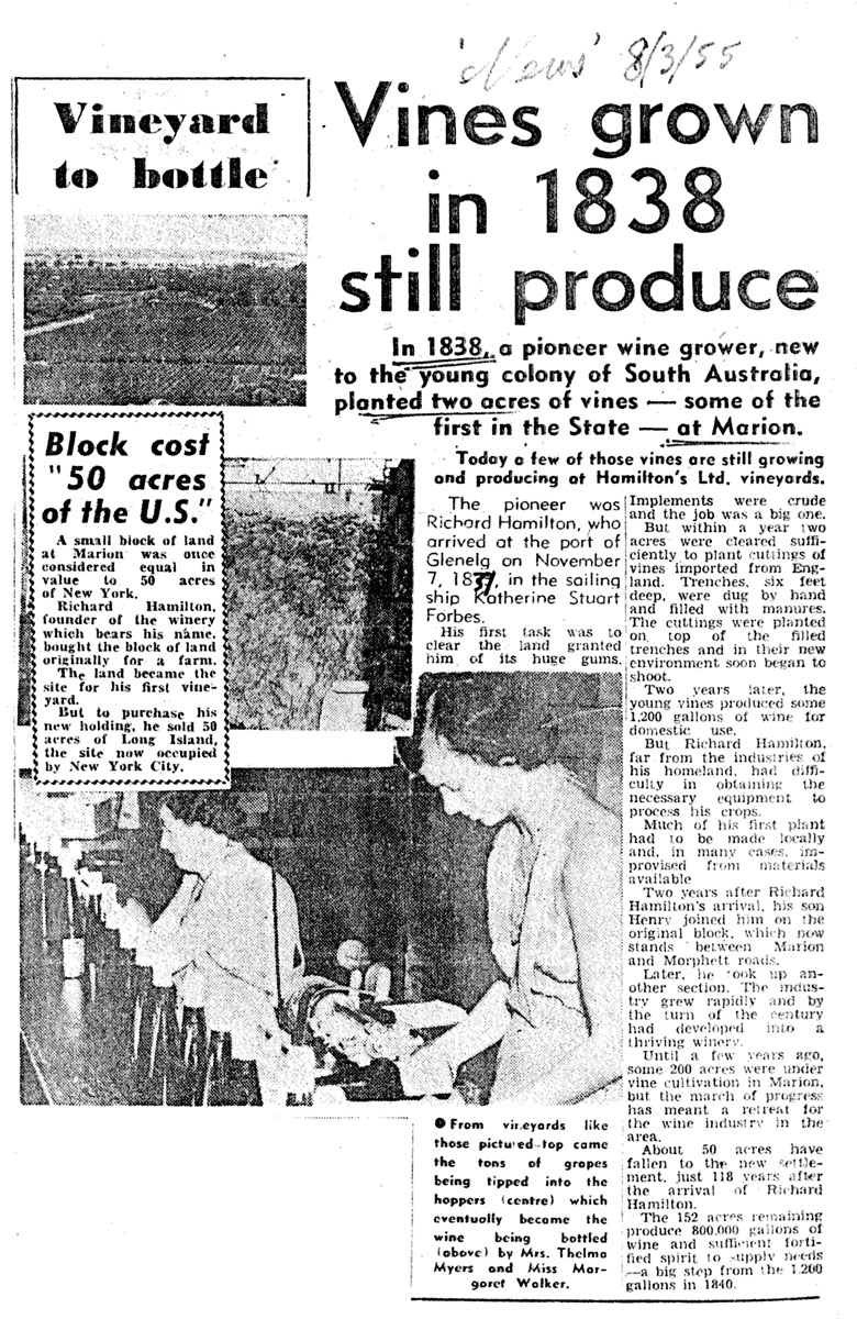 Vineyard-article-March-1955
